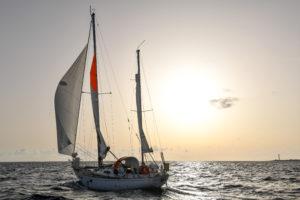 Bücher - und was sie anrichten können… - Literaturboot - Abenteuer & Fernweh, Blog