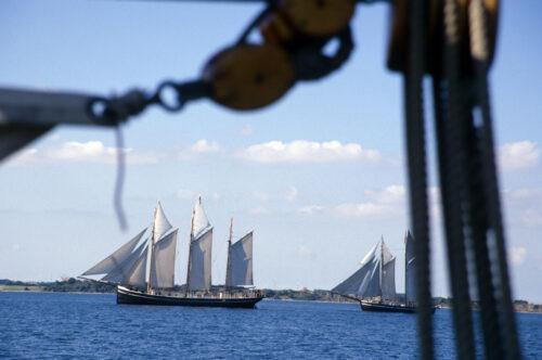 Rund um den Limfjord - Literaturboot - Blog, Allgemein
